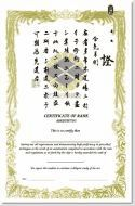 generic martial arts certificates